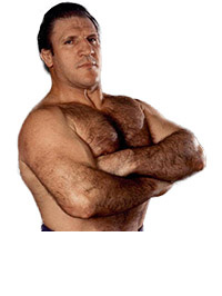 Bruno Sammartino Collection