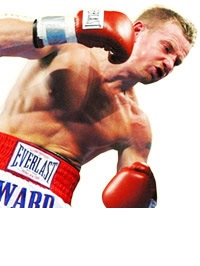 Micky Ward Collection